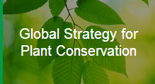 global-strategy-for-plant-conservation
