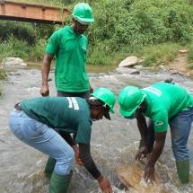 equipe-de-green-connexion-posant-un-echantillion-de-podostemaceae-menacees-dans-le-fleuve-avoo-a-ndji-2