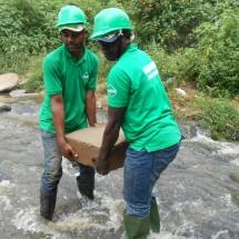 equipe-de-green-connexion-posant-un-echantillion-de-podostemaceae-menacees-dans-le-fleuve-avoo-a-ndji